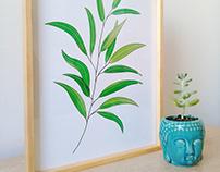 Diseños vegetales para art prints- ALGOBONITOART