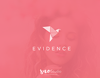 Logo design purpose for Evidence