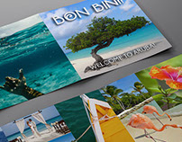 Aruba Destination Travel Piece