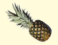 Pineapple vector art