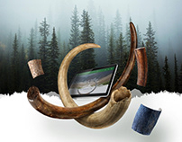 Arctic Antiques ecommerce