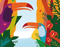 Selva subtropical misionera ~ Ilustración