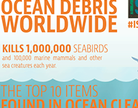 Ocean Debris Infographic