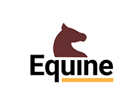 Equine | Interaction Design & Motion