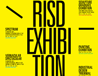 RISD Exhibition 2016/17