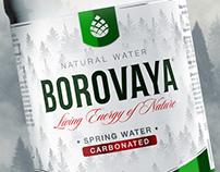 BOROVAYA water