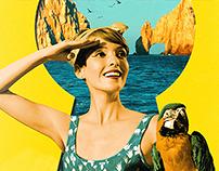 Los Cabos International Film Festival 2014