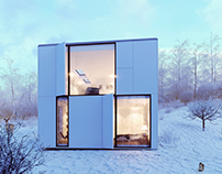 Winter House / Personnal project