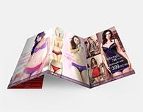 IBasic Vietnam - Brochure - 2012