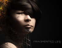 FRAGMENTED LIFE