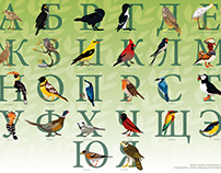 Алфавит и процесс работы