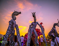 I paint body suits-electric zoo new york and zeebras