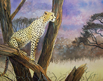 Watchful Cheetah in Tree - Watercolor on paper
