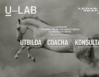 U-LAB Corporate coach