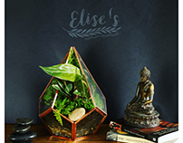 Elise's ხელნაკეთი ქოთნები