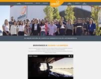 Selenin, Wordpress website
