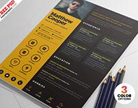 Designer Resume CV PSD Template