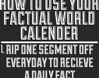 The factual world calender 2013