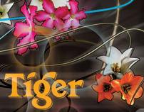 tiger translate 2008