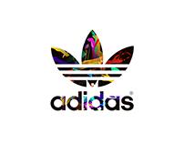 Adidas D-1 Branding Concept