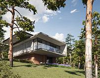 CGI-Concrete House