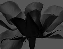 Black Flower - Viva Ceramica