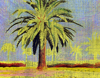 The Palm Tree Series | Free Drawings