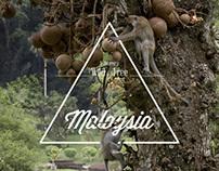 Wild & Free : Malaysia