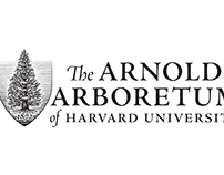 Arnold Arboretum of Harvard University by Steven Noble