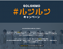 SOLIDEMO project website