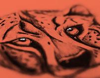 Cheetah - 2016