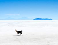 Bolivia / 2012