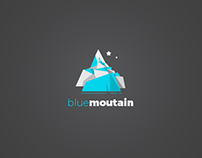 Logo design for fictional brand, Blue mountain