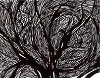 Pădure Neagră