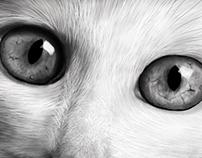 Gato - Pintura digital