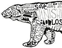 The Vanishing Bear