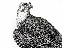 gyrfalcon and leopard