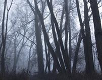 Treelogie