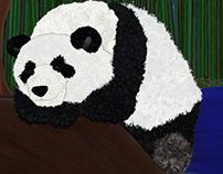Panda Sitting by Bamboo Who doesn't love a panda bear?