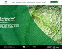 Responsive Web Design, Brassica and Leafy Salad