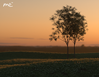 3D Sunset in Modo & Octane