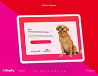 Royal Canin AR app
