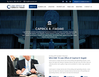 HICOUNSEL - Business and Commercial Law Website