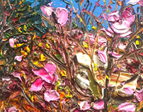 Image-spring(azalea)
