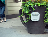Bigelow Organic Tea Ambient