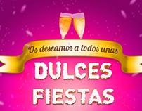 Felices fiestas, feliz 2013!