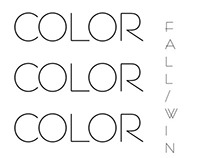 Color Trend Book  Fall/Winter 2014