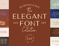 THE ELEGANT FONT COLLECTION - 94% OFF!