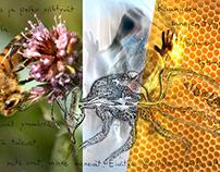 """""""Mehiläishoito"""" - """"Bee life"""" Art Installation plan"""