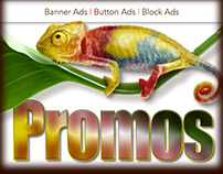 Internet Promotional Ad Design